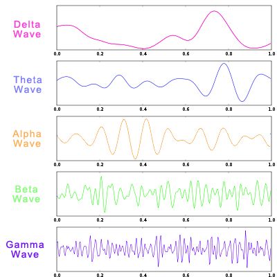 delta theta alpha beta gamma brain waves